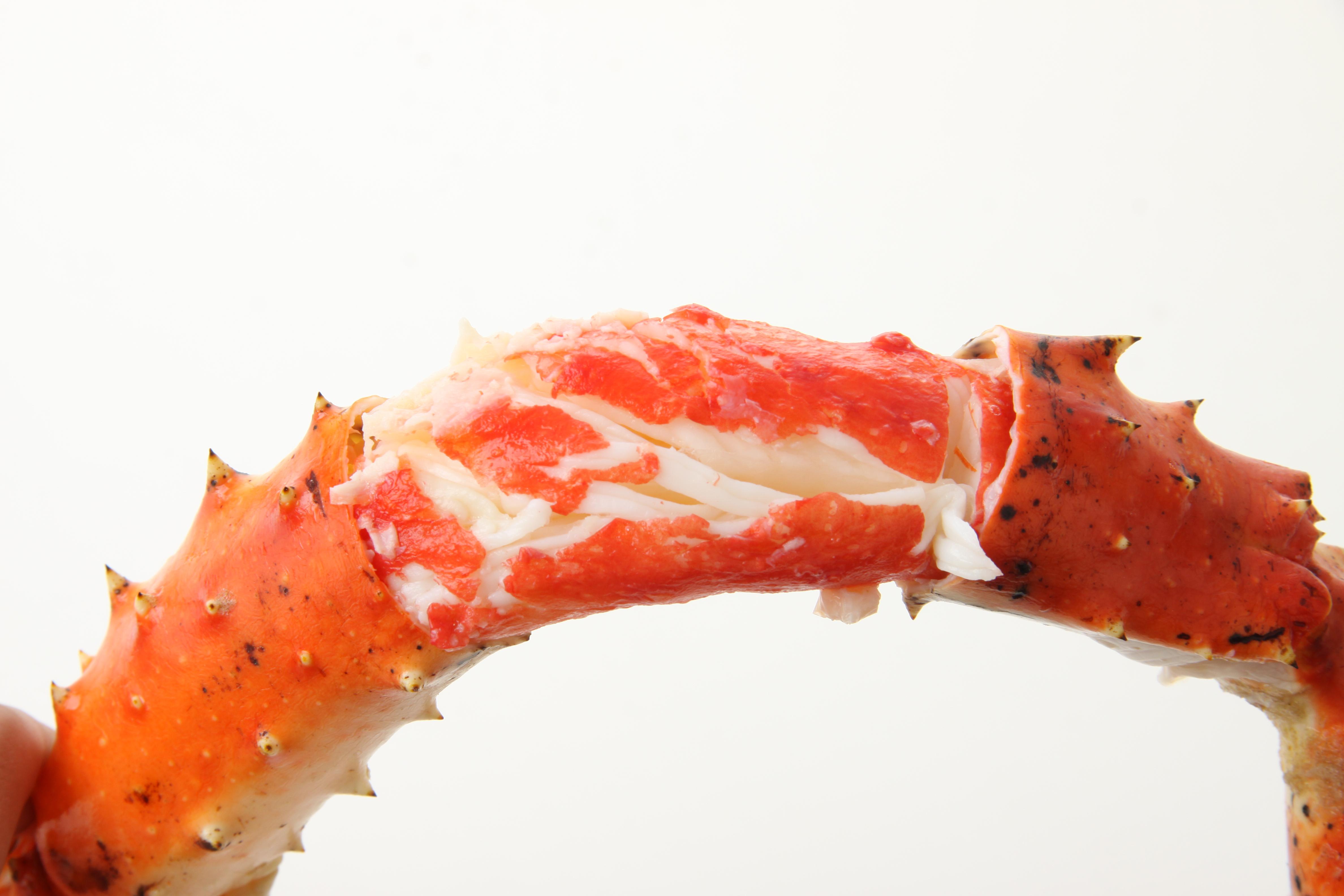 """かにの""""爪""""と""""足""""の味、食感の違いとは?"""